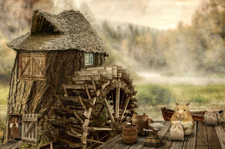 house series: series, fairy house (mill), a fictional illustration of house and the situation in the form of a collage of photos Stock Photo