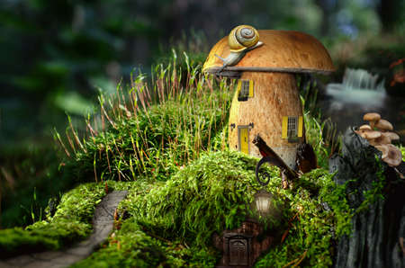 house series: series, fairy house (mushroom), a fictional illustration of house and the situation in the form of a collage of photos