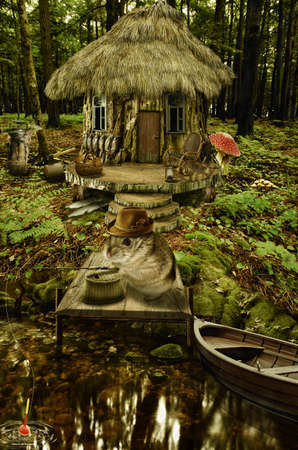 implausible: series, fairy house (mushroom), a fictional illustration of house and the situation in the form of a collage of photos
