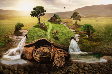turtle slowly moves along the ground transforming the world around them