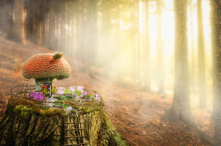 fairy house on a tree stump in the forest (illustration of a fictional situation, in the form collage of photos)