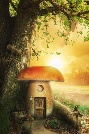 tree house: mushroom fairy house at the base of the tree on a sunny day