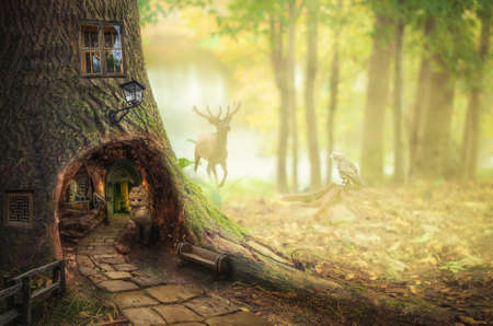 Girl in fairy forest found the secret entrance to the dungeon. Stock Photo