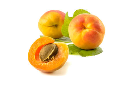 apricot fruits on a white background (blank for your photo manipulations / collages)