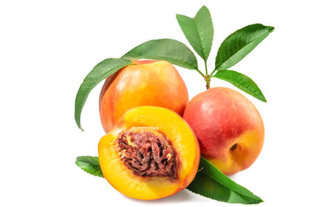 fruits of nectarine on a white background, blank for your photo manipulations