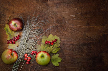 apples, dry spikelets and leaves on a dark wooden background. Autumn style. Standard-Bild