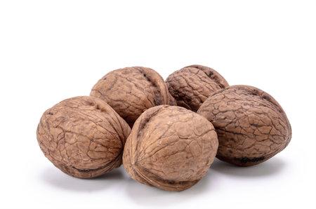 walnut on white background Standard-Bild