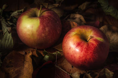 apples among dry foliage on a dark wooden background