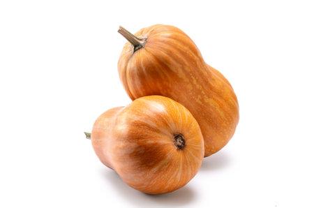 pumpkin fruit on white background with soft shadow Standard-Bild
