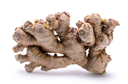 ginger root on white background with soft shadow Standard-Bild