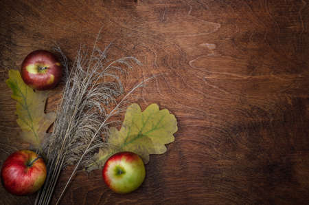 apples, dry ears and leaves on a dark wooden background. Autumn style.