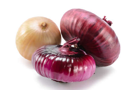 red onion on white background with soft shadow Standard-Bild
