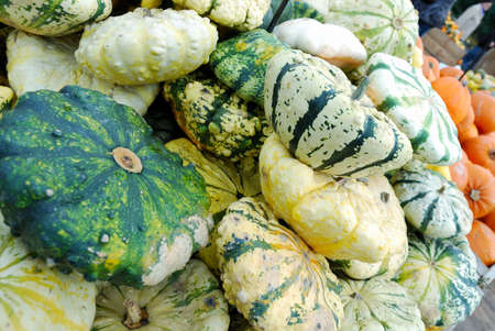 Heap of green striped pumpkins for retail sale photo
