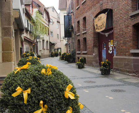 baden wurttemberg: Decorated bush on the quiet street of Stuttgart - bad Cannstadt old town, Baden Wurttemberg, Germany