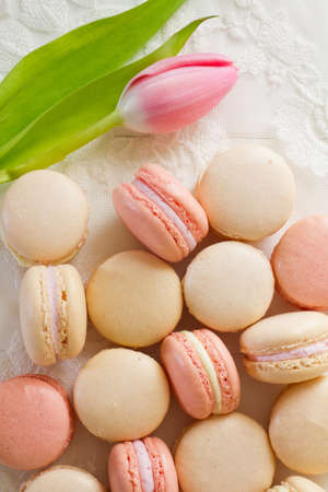 A pile of French macarons (pronounced macaroon, a popular buttercream filled meringue type cookie or biscuit) on white wood and lace. A single pink and white tulip lays to one side. A fresh, feminine image.