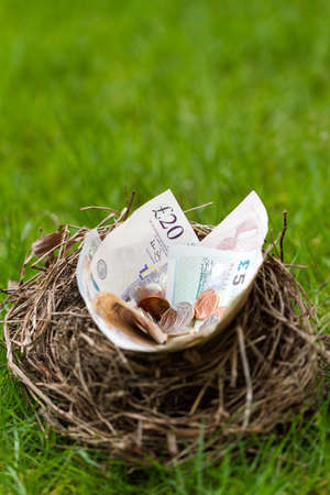 coppers: Nest filled with Btitish money. This nest was an abandoned nest found in a hedge that was being removed.
