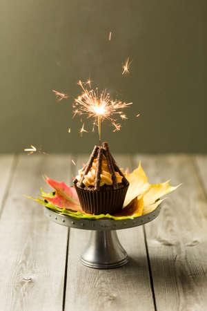 guy fawkes night: Cupcakes con glassa arancione turbolenza con le dita di cioccolato come tronchi