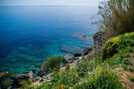 Coast of Cap Corse with its crystal clear water, its Genoese towers, and broom in bloom.
