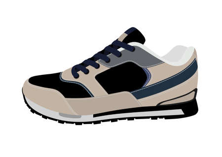 Sports sneakers in vector on white background.