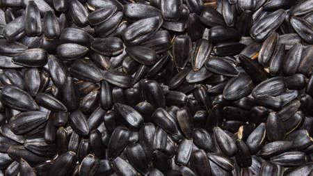 Sunflower seeds. Sunflower seeds. Stok Fotoğraf