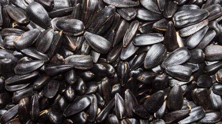Background of sunflower seeds.
