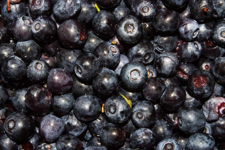 The texture of the blueberries. Blueberry background. Forest blueberries.