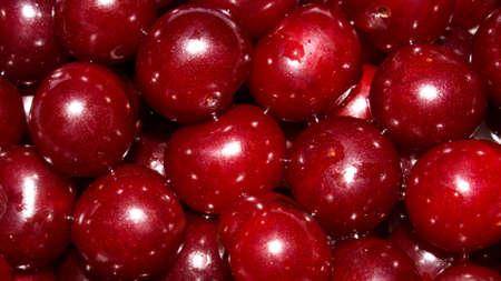Ripe cherry background.Large cherry fruit.