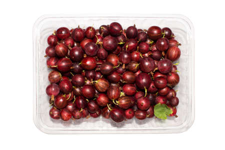 Red gooseberries in a container on a white background. 写真素材