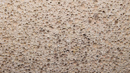 Background of porous pumice.