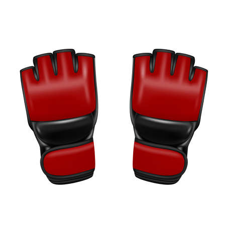 Gloves on white background.