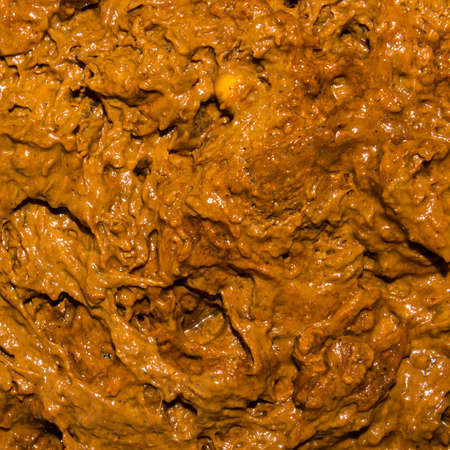 Texture of shit.Background of excrement.Shit in the sewers. Zdjęcie Seryjne