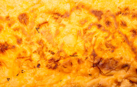 Cheese pita bread.The texture of the pita.Background of toasted cheese pita bread.