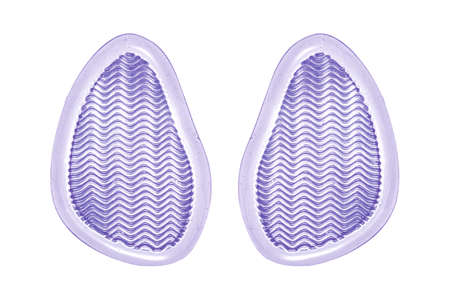 Gel pads under the heels. Silicone pads for shoes with heels.