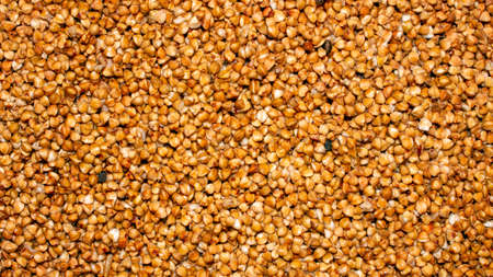 Buckwheat is a top view.The texture of the buckwheat.Background buckwheat.