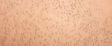 Unshaven stubble on a man's face.Part of an unshaven male face.Photo of male bristles.