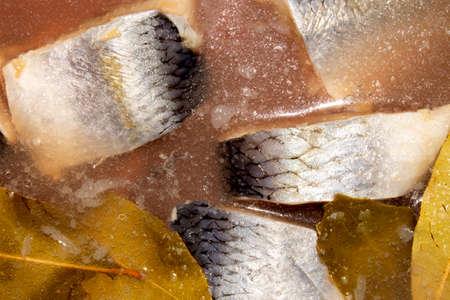 Herring, salted in pieces in its own juice. Russian herring in brine top view.