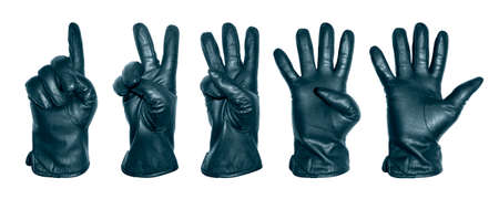 A set of five hands in a blue leather glove with numbers in the form of fingers.Hands in leather gloves in the form of numbers 1,2,3,4,5 on a white background.