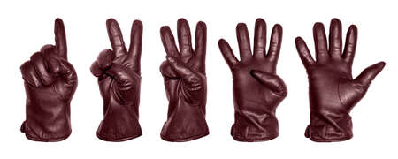 A set of five hands in a red leather glove with numbers in the form of fingers.Hands in leather gloves in the form of numbers 1,2,3,4,5 on a white background.