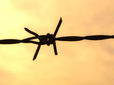 some barbwire  in the sky Silhouette Stock Photo - 20919246
