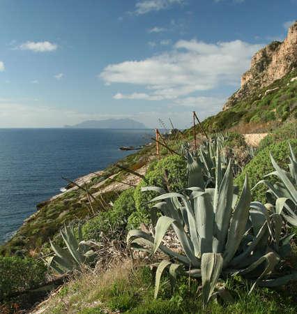 egadi: Panorama - Egadi Islands