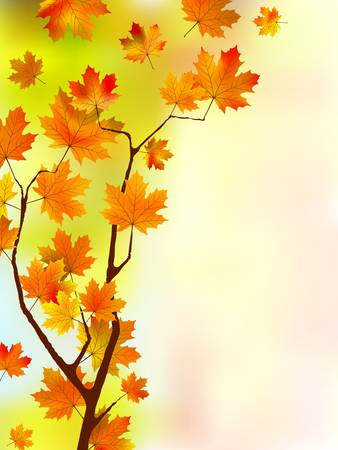 Autumn silk floral leaves.  Vector