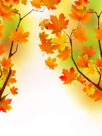 Fall red maple forest background. Vector