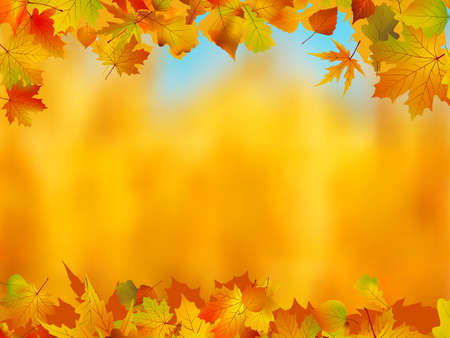 Autumn leaves border for your text.  photo