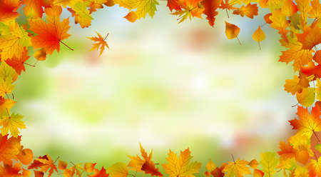 Autumn card of bright multicolor leaves.  Stock Photo - 8089138