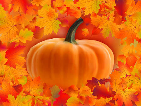 Pumpkin with copyspace for your text surrounded by autumn leaves.  photo