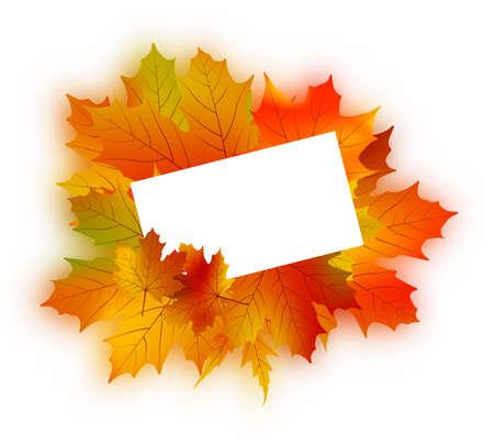Autumn card on white.  photo
