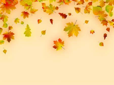 Autumn card of multicolor leafs. photo
