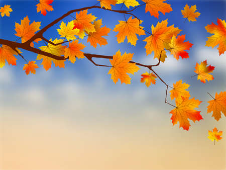 Fall leaves in front of blue sky with clouds. EPS8 photo