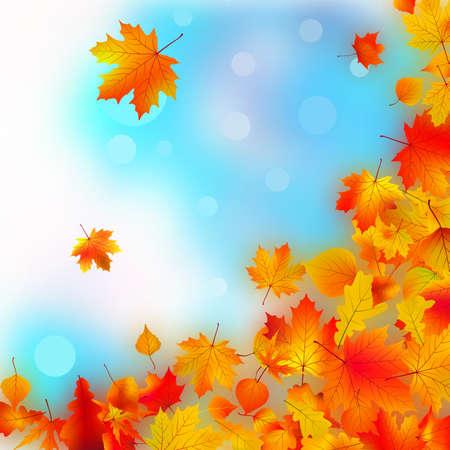 Falling fall leaves. EPS8 photo