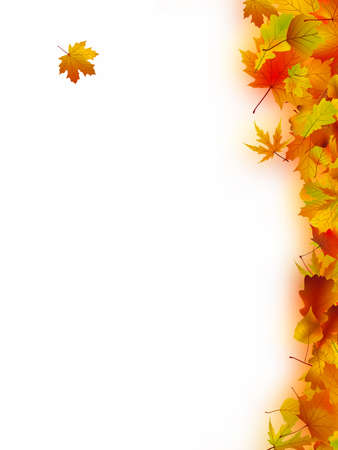 redness: Decorative frame from bright autumn leaves.